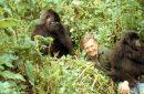 'Wonders Will Never Cease' | Ninety Years of David Attenborough